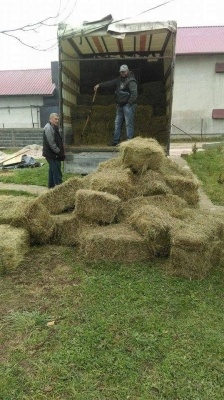 Donate For Winter Hay And Straw